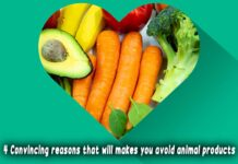 4 convincing reasons that will makes you avoid animal products vegetarian, vegan food near me, vegan restaurants, vegan food, vegetarian restaurants, vegetarian meals, vegetarian friendly food, vegan meals, vegetarian dishes