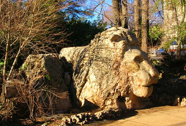 the famous statue of atlas lion Ifrane the Moroccan fascinate city